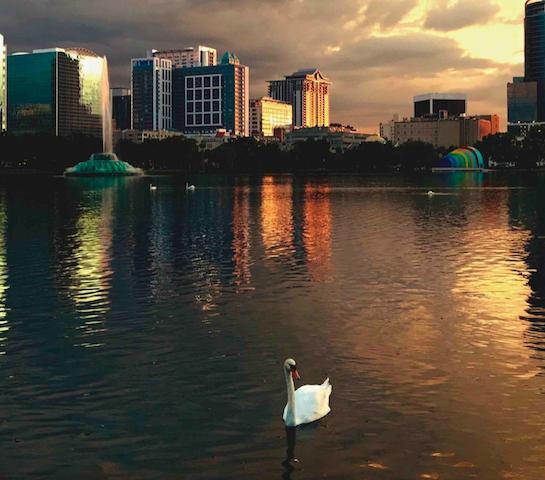 Lake Eola Park - Downtown Orlando | Orlando Land Trust
