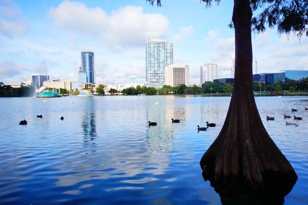 Orlando Land Trust | COVID-19 Response