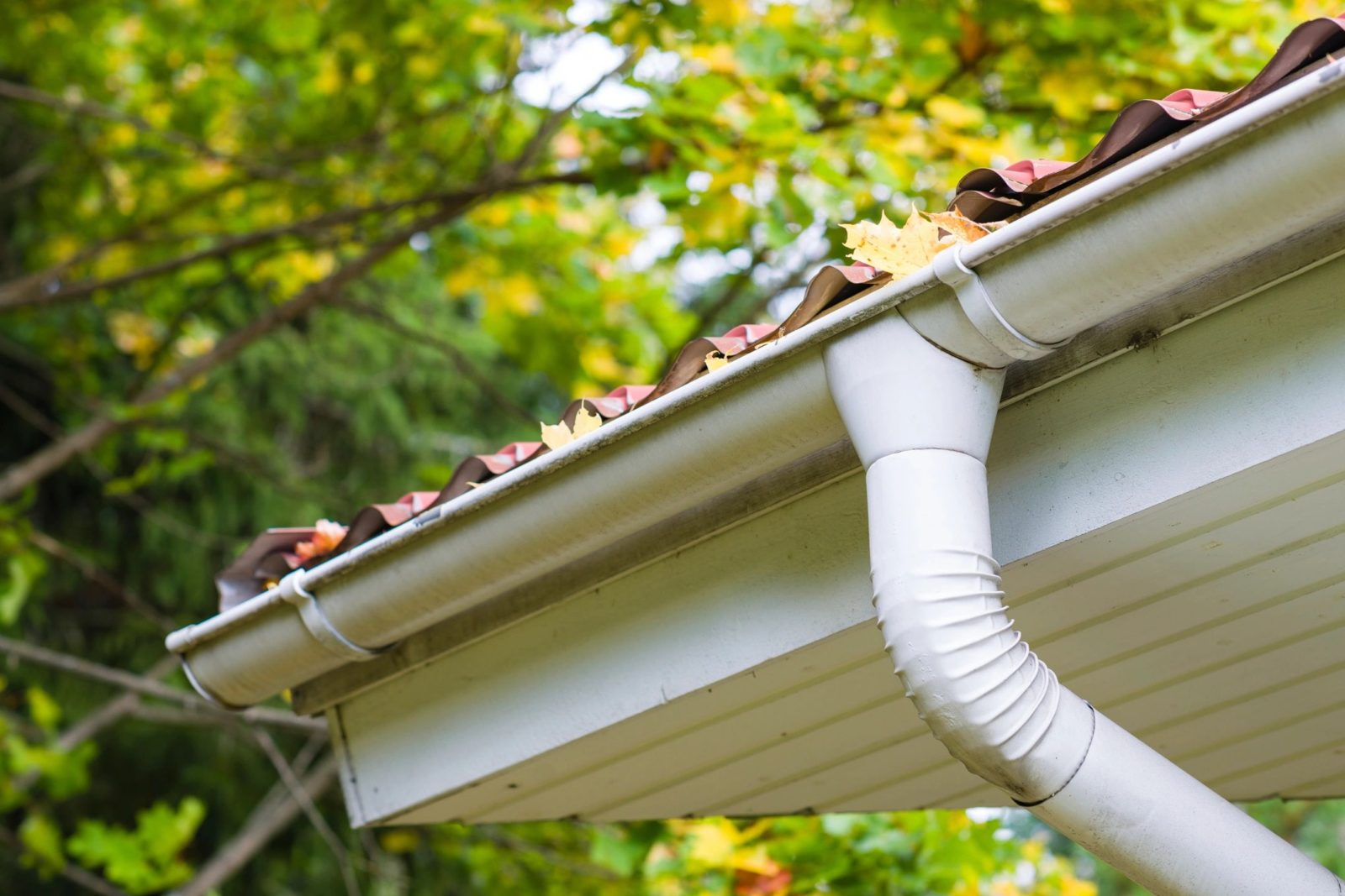 Clean and Maintain gutters