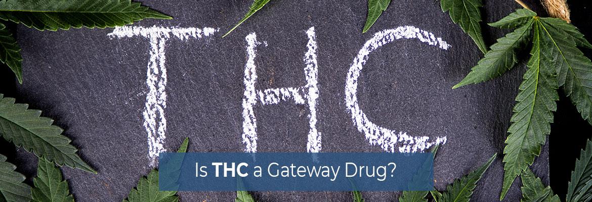 Is THC a Gateway Drug?