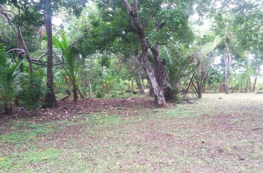 Vendo terreno en  San Carlos