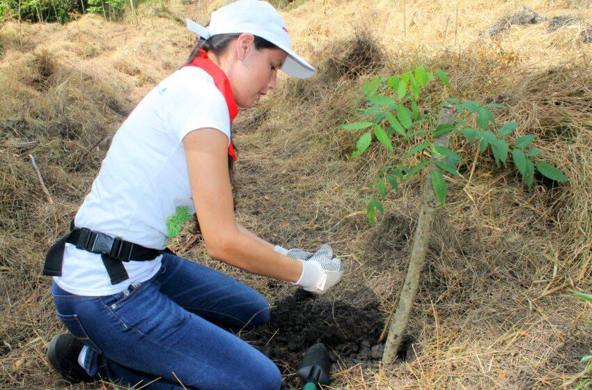 Desarrollan programa «Agua por el Futuro» en Panamá
