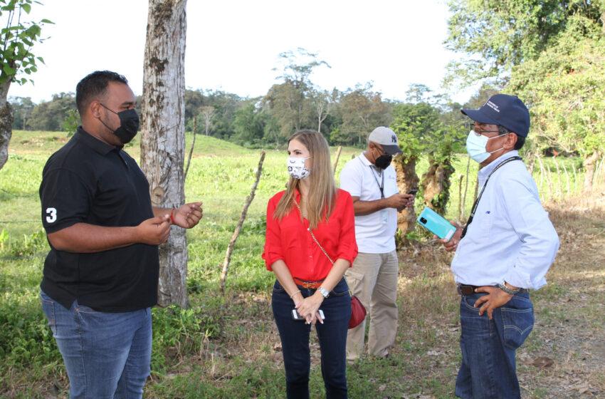 Funcionarios inspeccionan terrenos para escuelas  en Chiriquí y Bocas del Toro