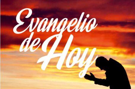 EL EVANGELIO DE HOY: 3 de Octubre 2021 DOMINGO XXVII DE TIEMPO ORDINARIO