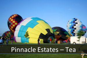 Pinnacle Estates