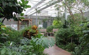 Sertoma Butterfly House