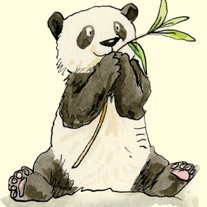 Gift for Panda Lovers