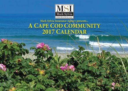 MSI Calendar 2017