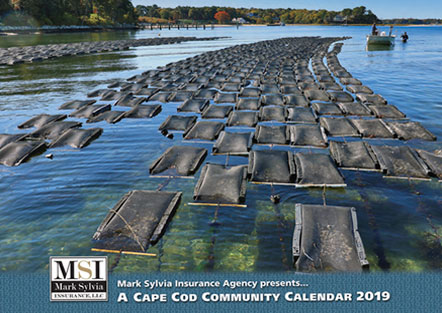 MSI Cape Cod Community Calendar 2019