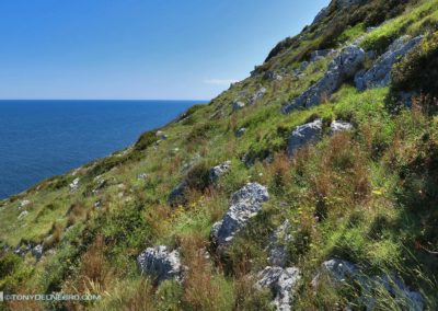 Tony-DelNegro-Cape-Cod-Photos-Italy52