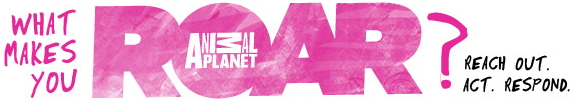 Animal Planet will R.O.A.R for animals once again with matching campaign for non-profit partners