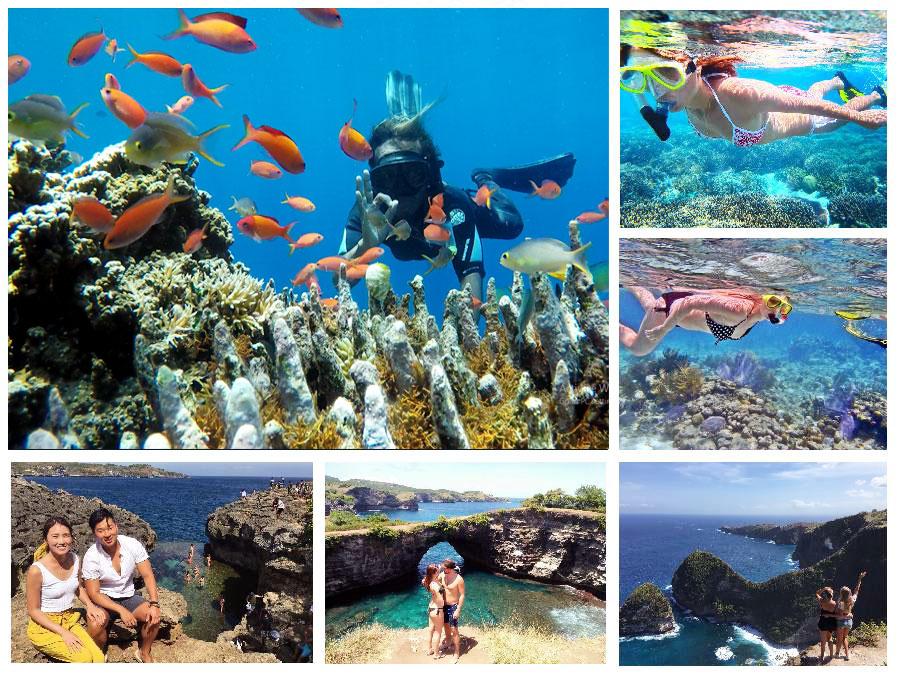 Bali Snorkling - Bali Safest Driver - Bali Driver