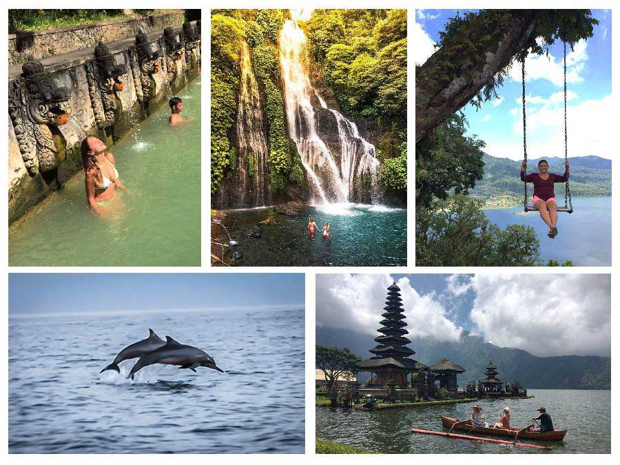 Dolphin Sunrise and Bedugul Tour