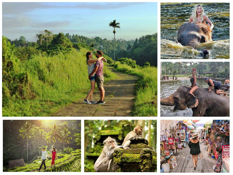 Tegalalang and Monkey Forest, Campuhan Ridge Walk, Mason Elephant Ride