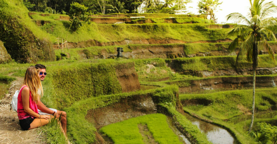 Tegalalang Rice Terrace Bali Safest driver Tour