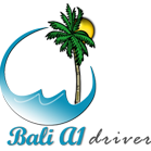 Bali A1 Driver | Airport Transfer And Pick Up 6 - 9 Person - Bali A1 Driver