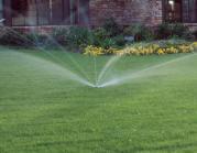 garden landscape, lawn service, lawn mowing, frisco lawn care