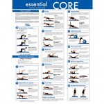 Essential Core Poster