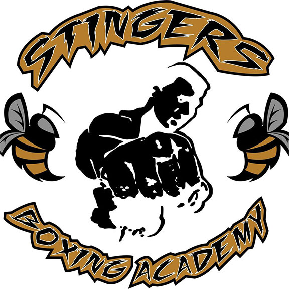 stingers boxing