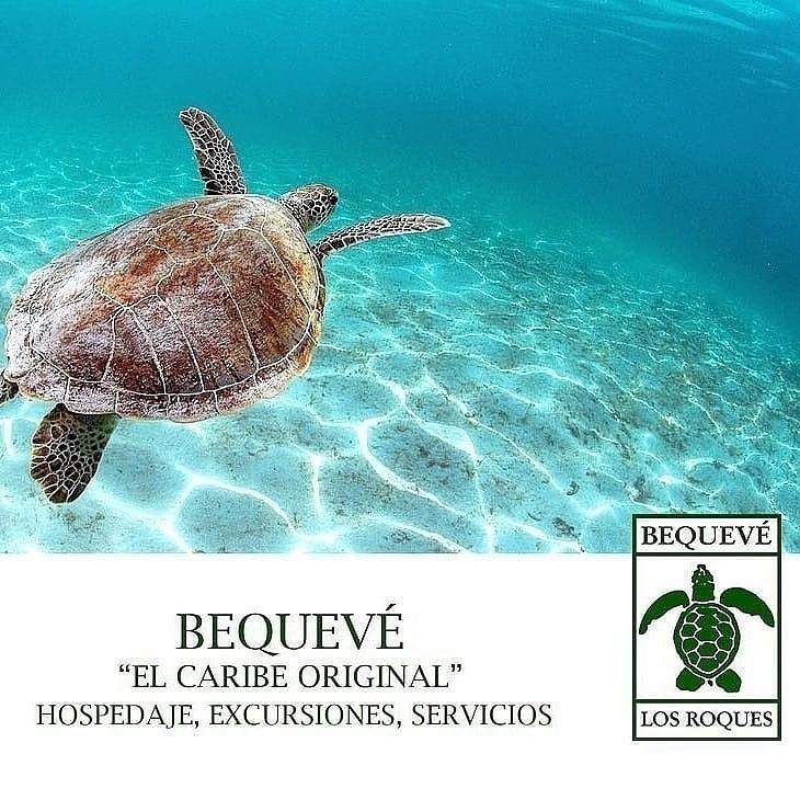 Posada Bequevé - Los Roques - Vuelosypaquetes.com - NbgTours Agencia de Viajes en Caracas