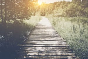 The Path to Engaging a Structured Settlement Consultant