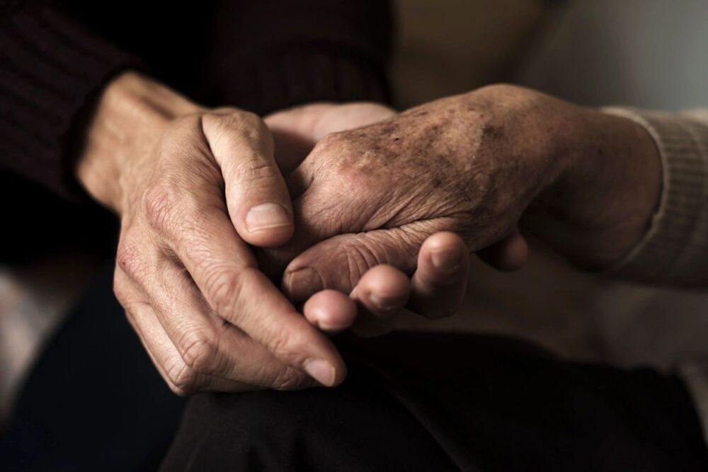 elder abuse lawyers