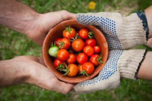 gardening allows you to gift others with home grown food