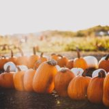fall festivals in nc