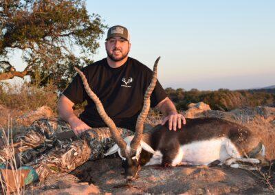 Blackbuck Antelope Harvest TX