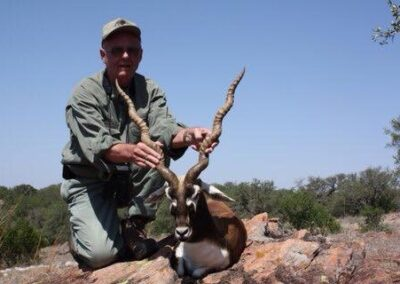Blackbuck Antelope Harvest1
