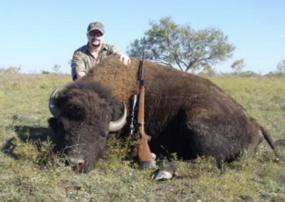 Buffalo Harvest