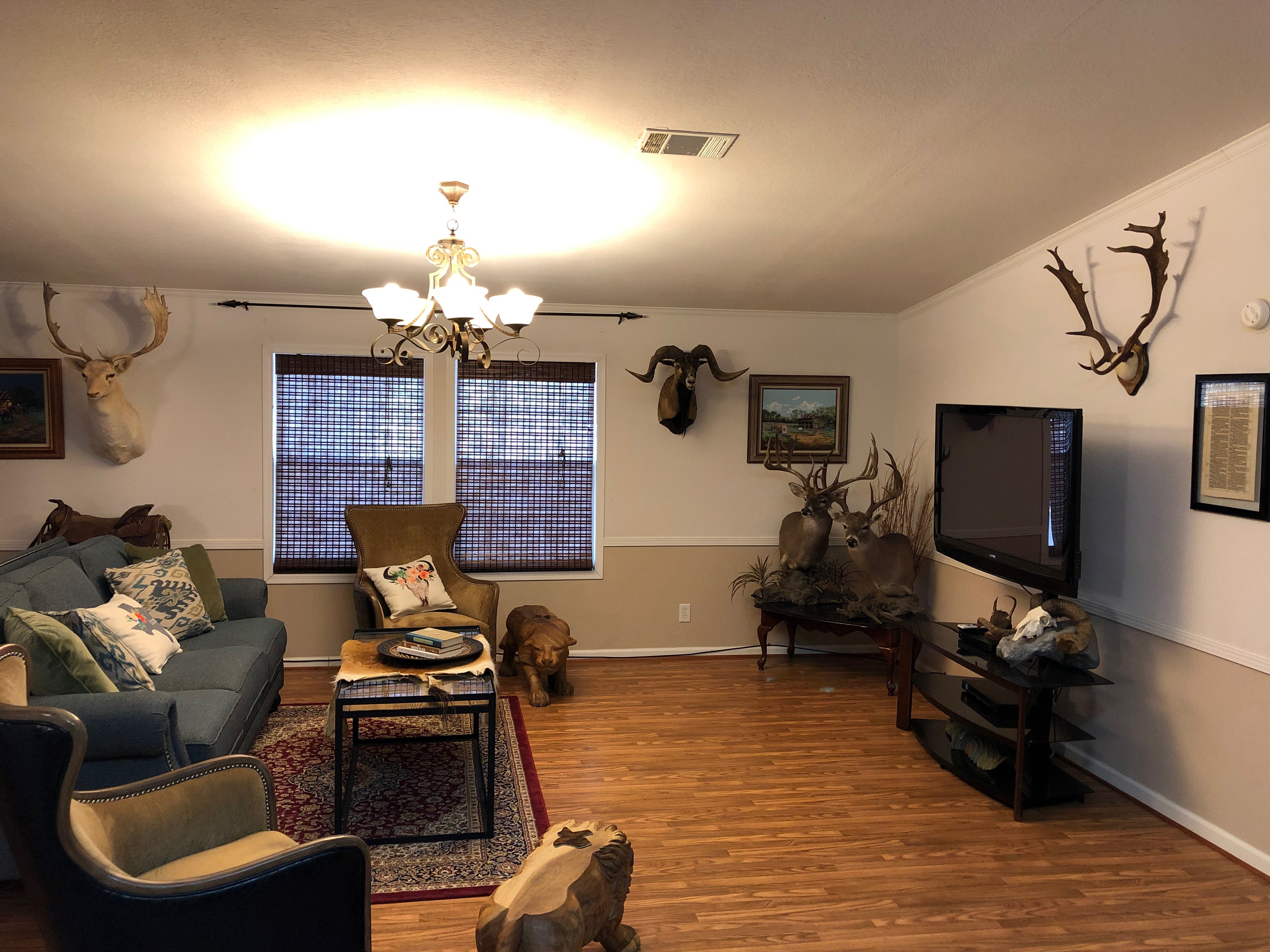 Copperas Cove Living Room