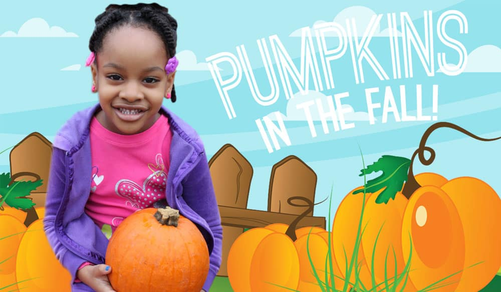 fall fun pumpkin patch brooklyn ny