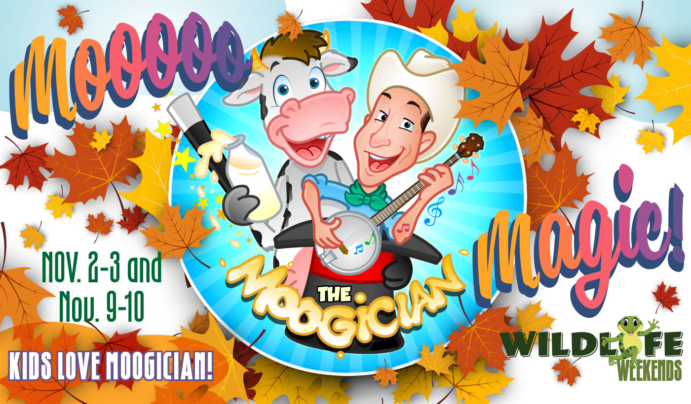 kids magician wildlife weekends november 2019 queens floral park ny