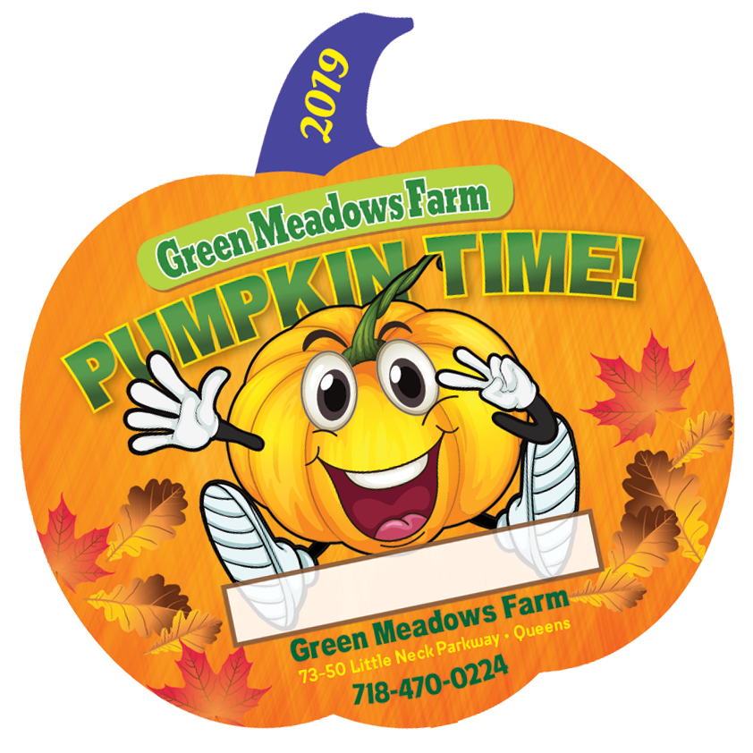school field trips queens ny floral park pumpkin picking fall 2019
