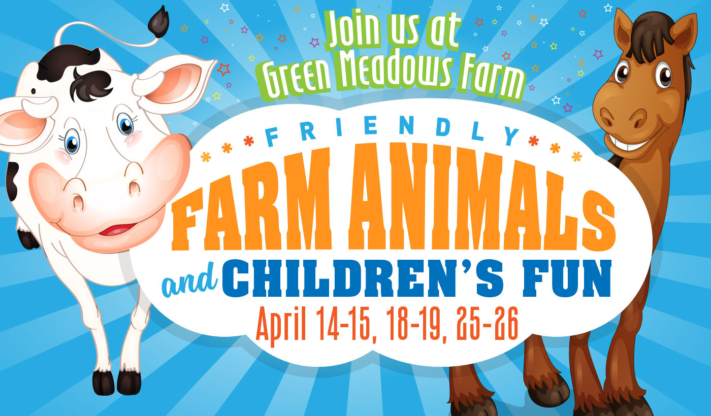 friendly farm animals event green meadows farm queens ny may june 2020