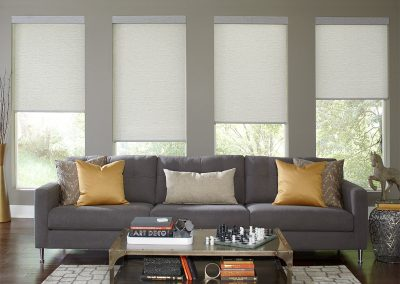 light filtering cordless roller shades
