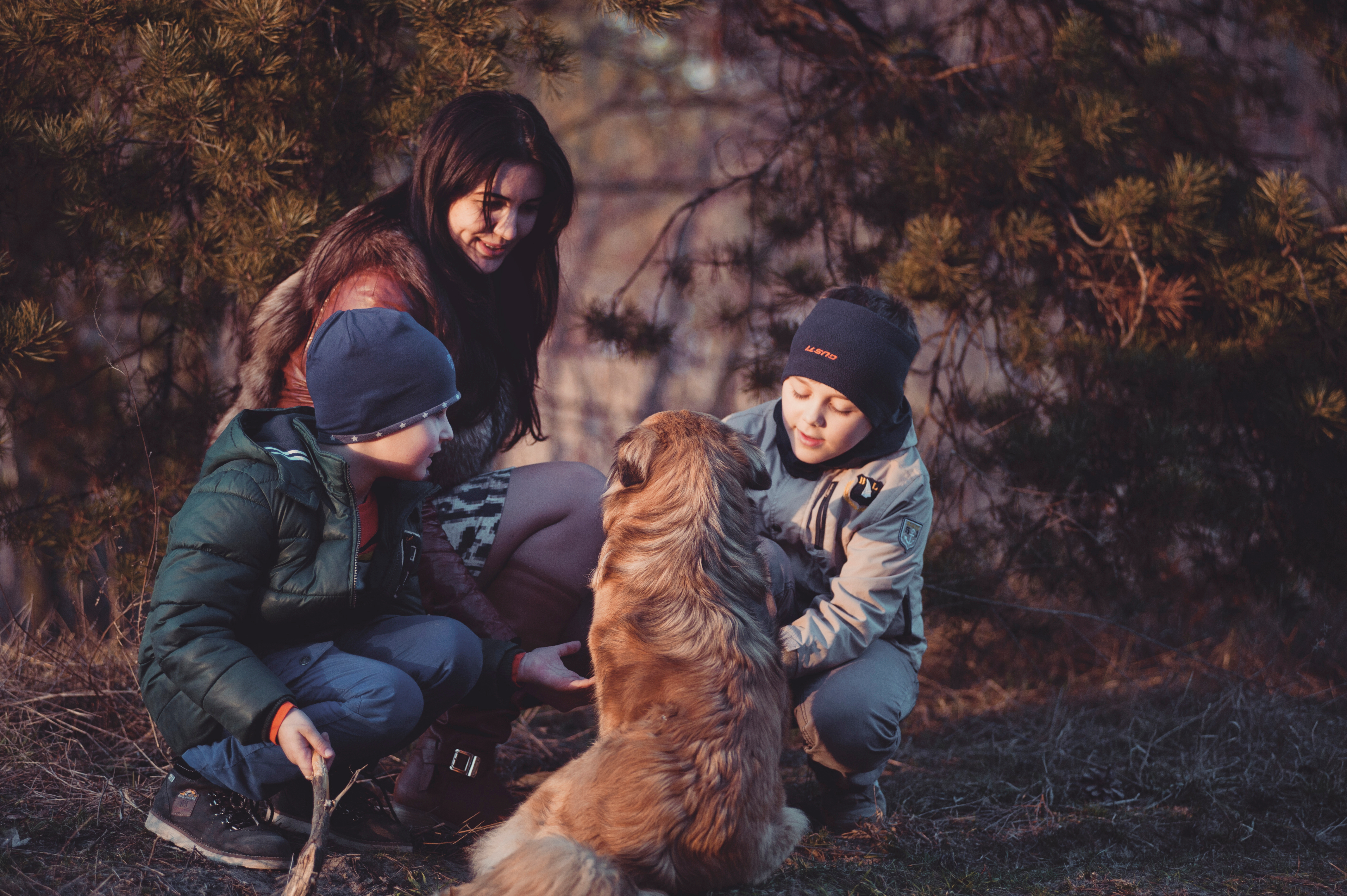 Canva - Three People Crouching in Front of Sitting Dog