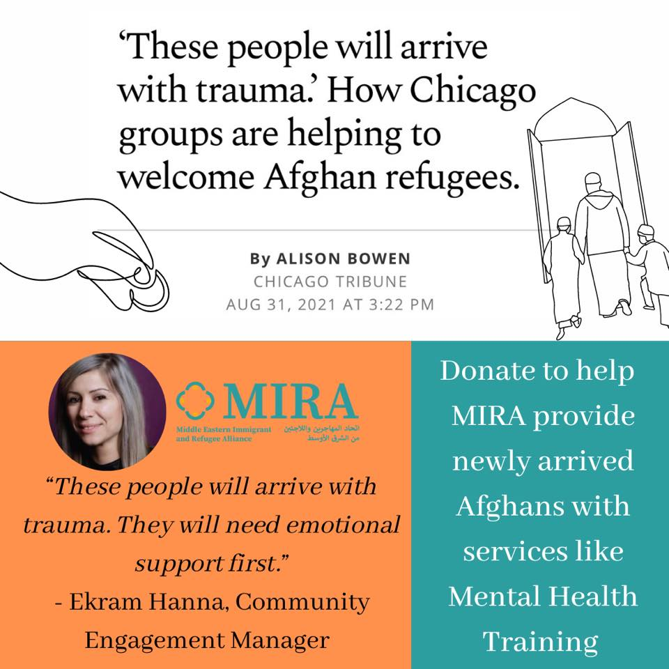 Graphic for link to Chicago Tribune Article on Afghan Refugee Mental Health