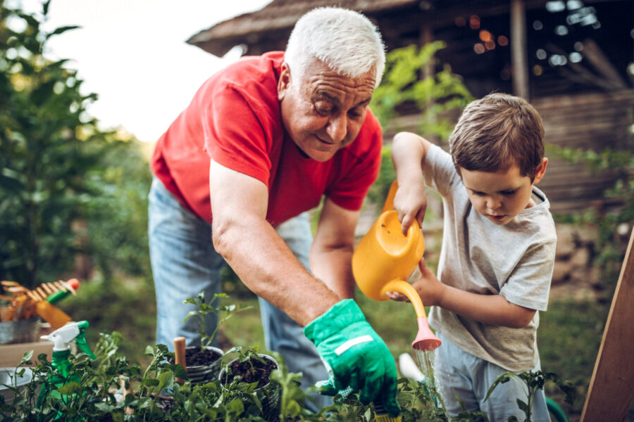 Elderly home care man watering plants with grandson