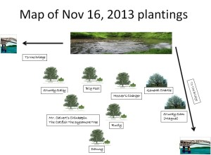 Map of plantings for the website