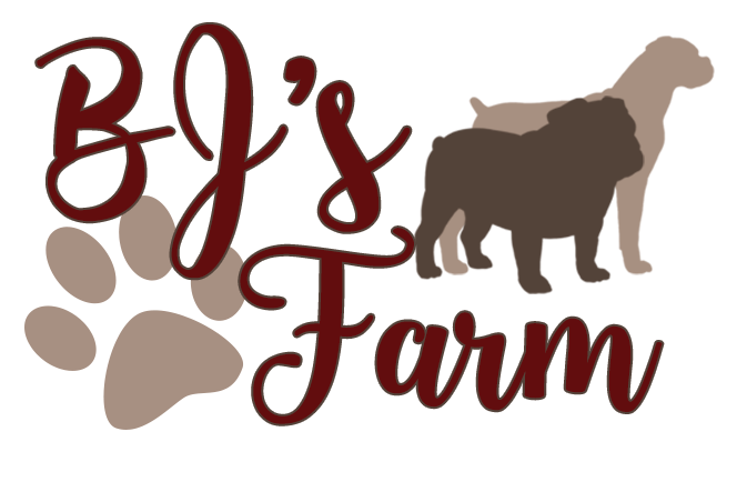 BJ's Farm