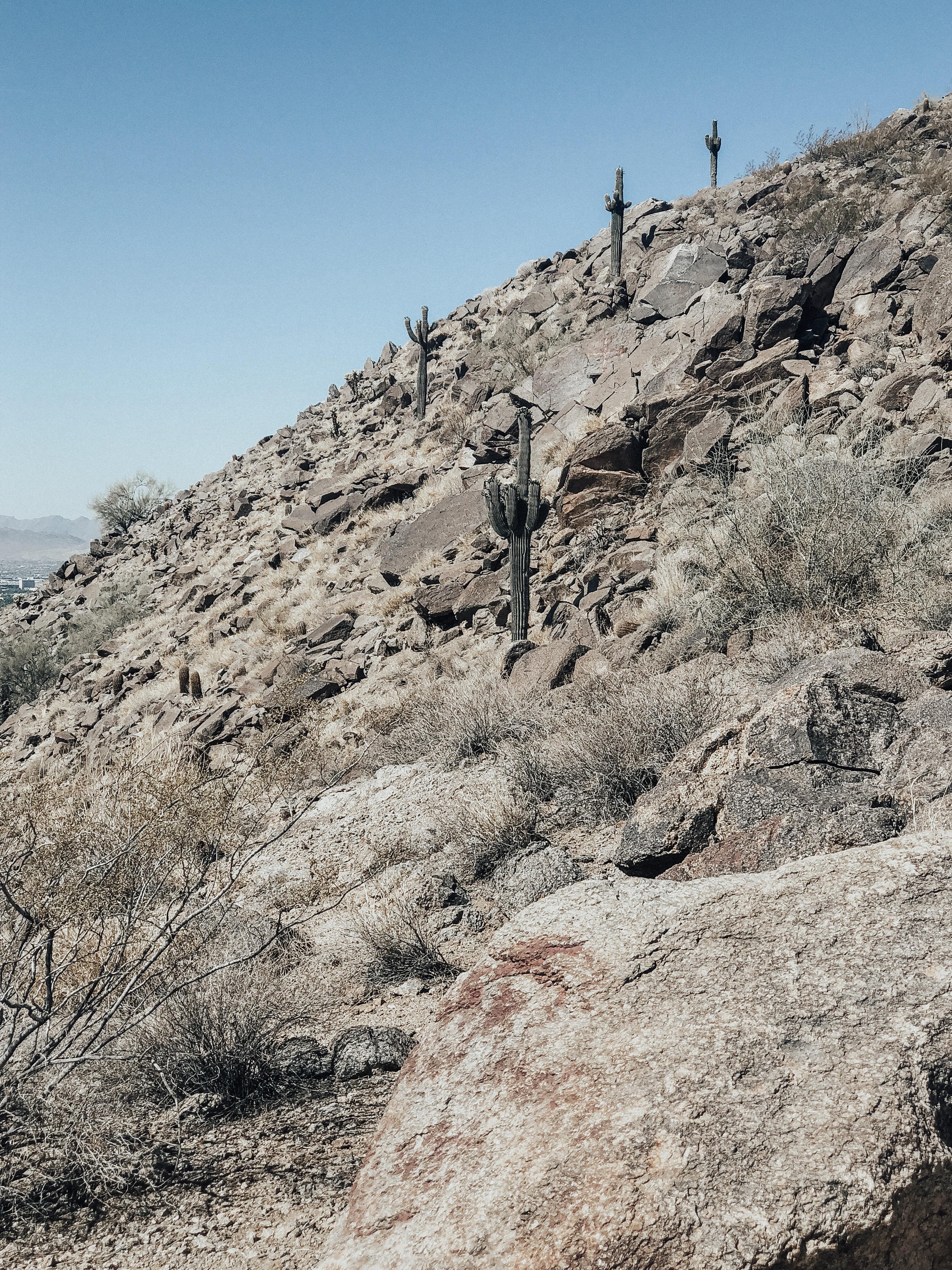 Arizona travel guide
