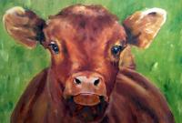 short, rosalie, cow