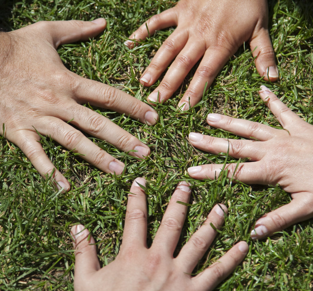Hands on Grass - Core Values Page