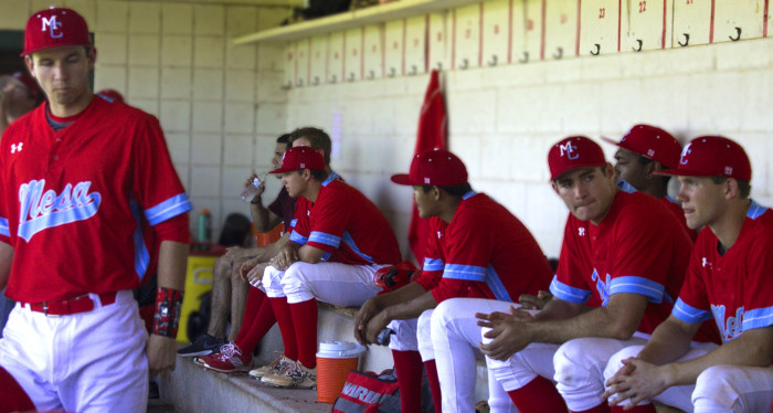 photo of Mesa T-Birds in the dugout.