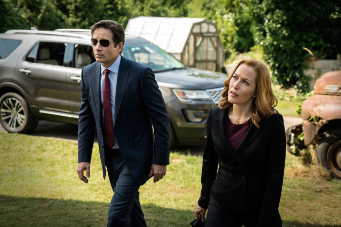 Gillian Anderson and David Duchovny reprise their roles as agents Mulder and Scully.