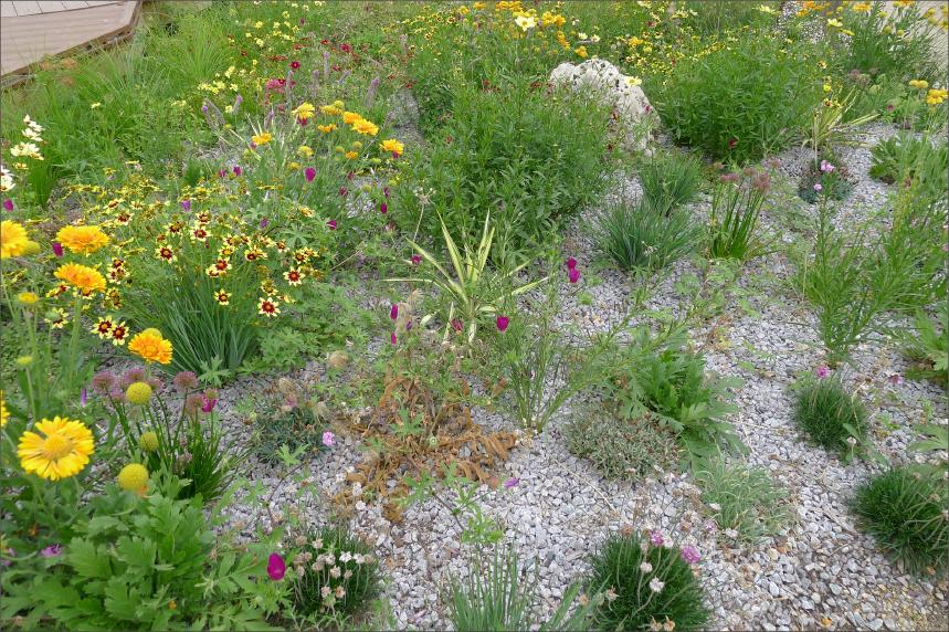 Diverse plant life.