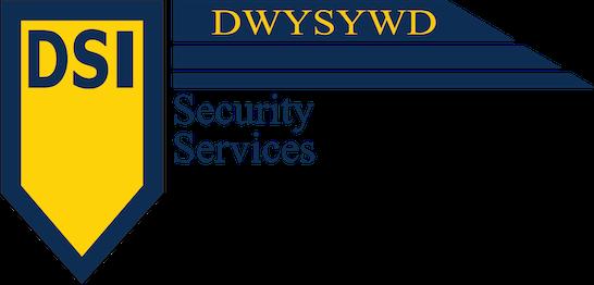 DSI logo blog header 1