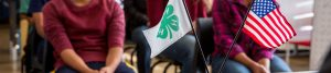 4-H flags